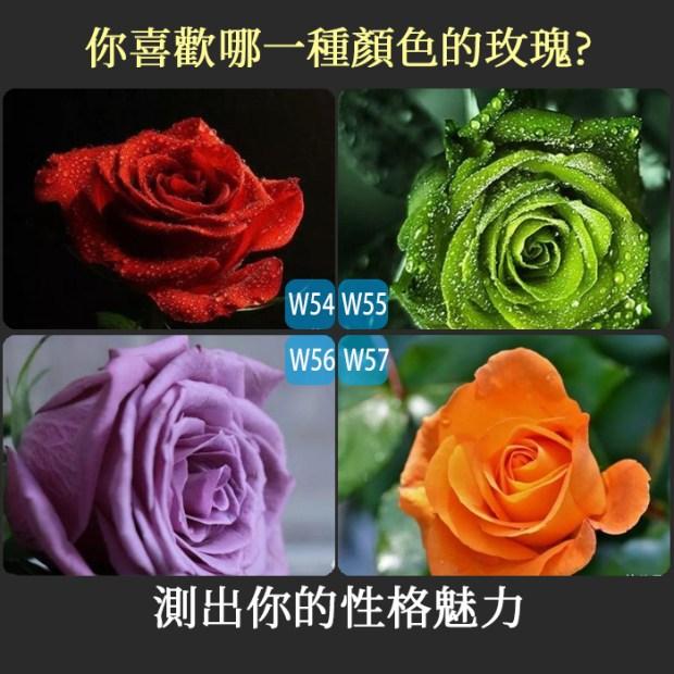 428_你喜歡哪一種顏色的玫瑰,測出你的性格魅力_主圖
