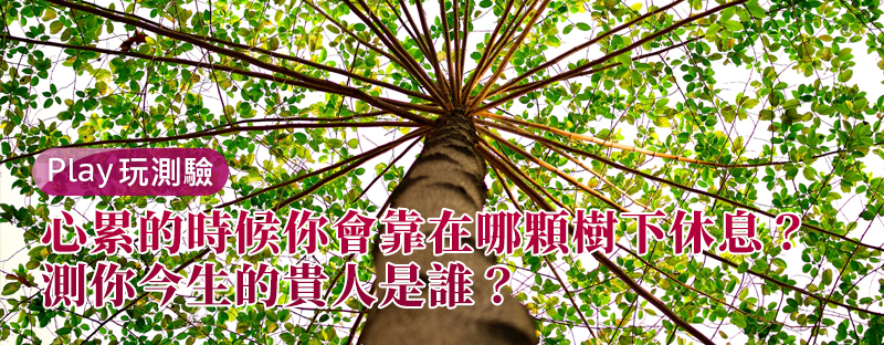 【個性心理測驗】心累的時候你會靠在哪顆樹下休息?測你今生的貴人是誰?