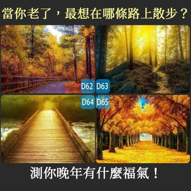459_當你老了,最想在哪條路上散步?測你晚年有什麼福氣!_主圖.jpg