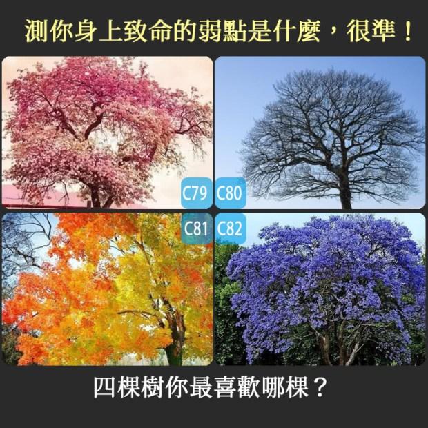 【個性心理測驗】四棵樹你最喜歡哪棵?測你身上致命的弱點是什麼,很準!