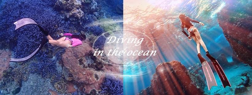 美人魚的化身,潛在水中一起感受大自然的力量和擁抱海洋的溫度,可以和海龜共游還有近距離接觸,更有城堡般的綠島亞特蘭提斯!