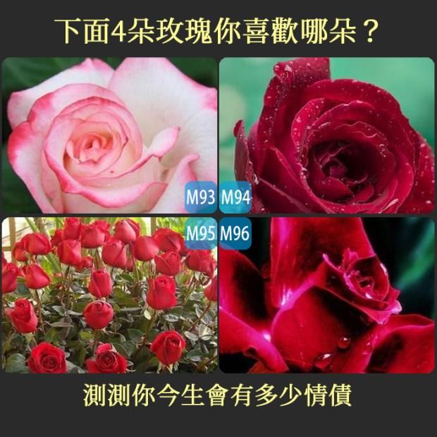 下面4朵玫瑰你喜歡哪朵?測測你今生會有多少情債