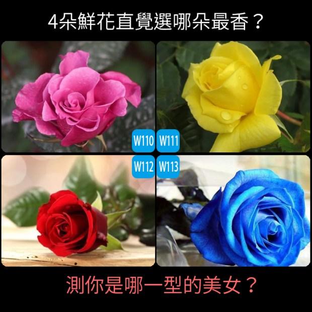 4朵鮮花直覺選哪朵最香?測你是哪一型的美女?