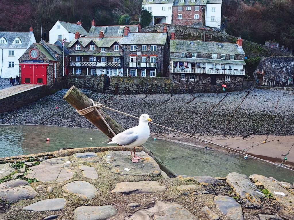 Weekend getaway in North Devon
