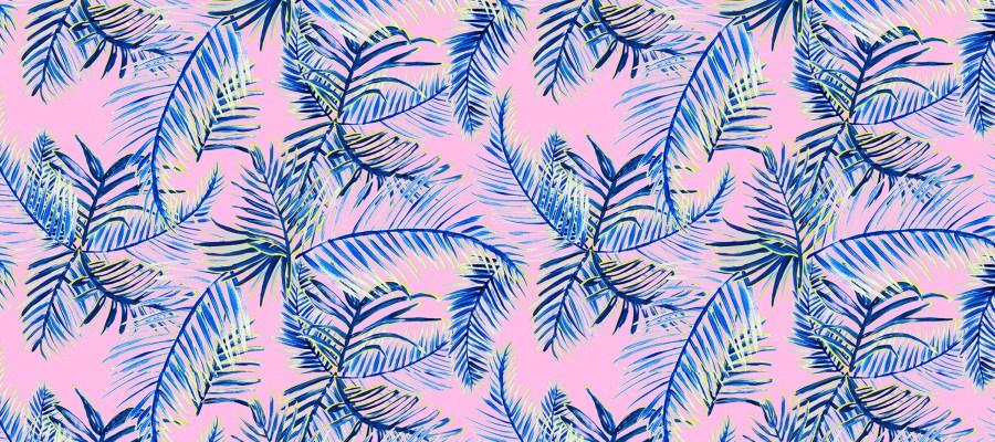 tropical rash shirt Queensland artist