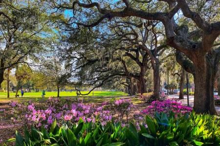 better things to do in Savannah GA