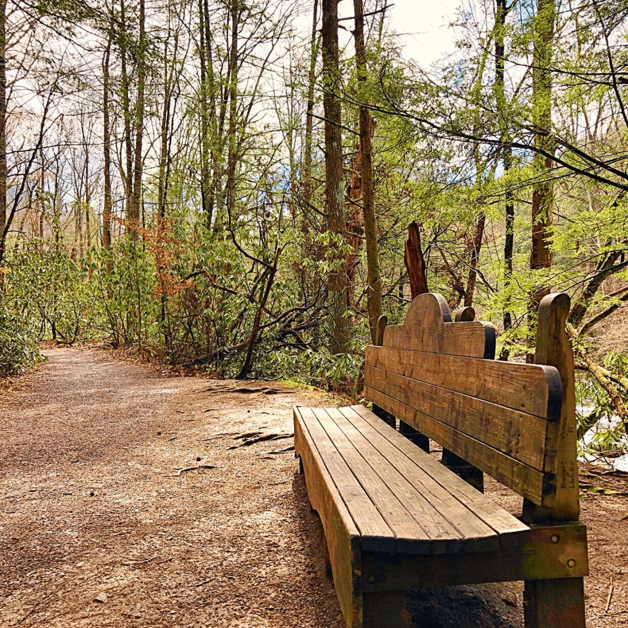 The hike along the gatlinburg trail in the great smoky mountains begins from either gatlinburg or the sugarlands visitor center. The Gatlinburg Trail In Great Smoky Mountains National Park Girl Camper