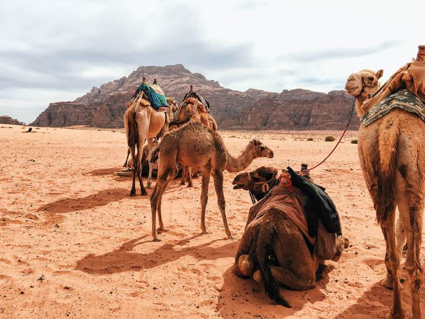 Camel camp in Wadi Rum, Jordan