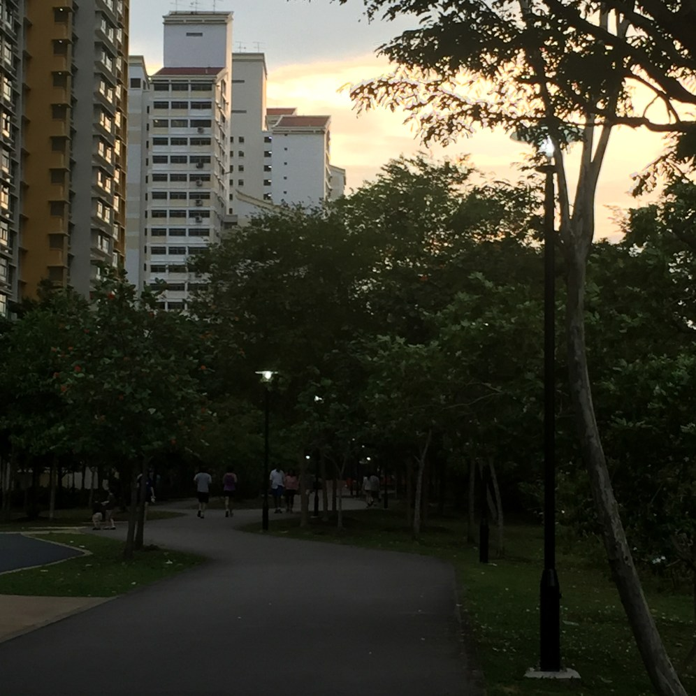 My new favorite running spot in Singapore
