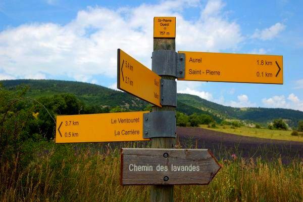 Chemin des Lavandes - Provence Lavender Season
