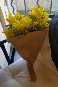 Route du Mimosa - Bouquet of Flowers