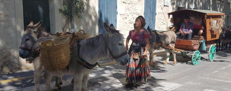 Lady and donkey - La Roque d'Anthéron