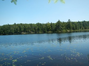Baden-Powell Lake in Algonquin Park, Ontario