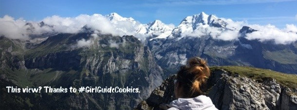 cookies mountainscape