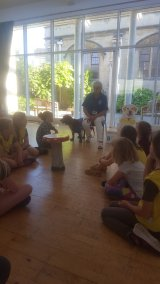33rd Brownies Guide Dogs 2