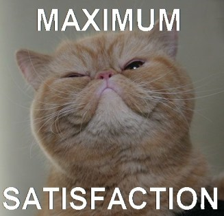 maximum-satisfaction-cat-