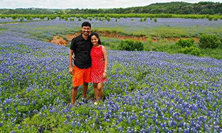Where To See Bluebonnets In Texas