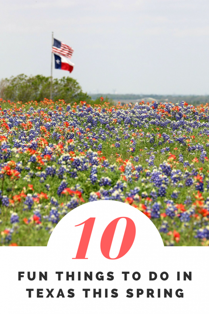 Fun Things to Do in Texas This Spring