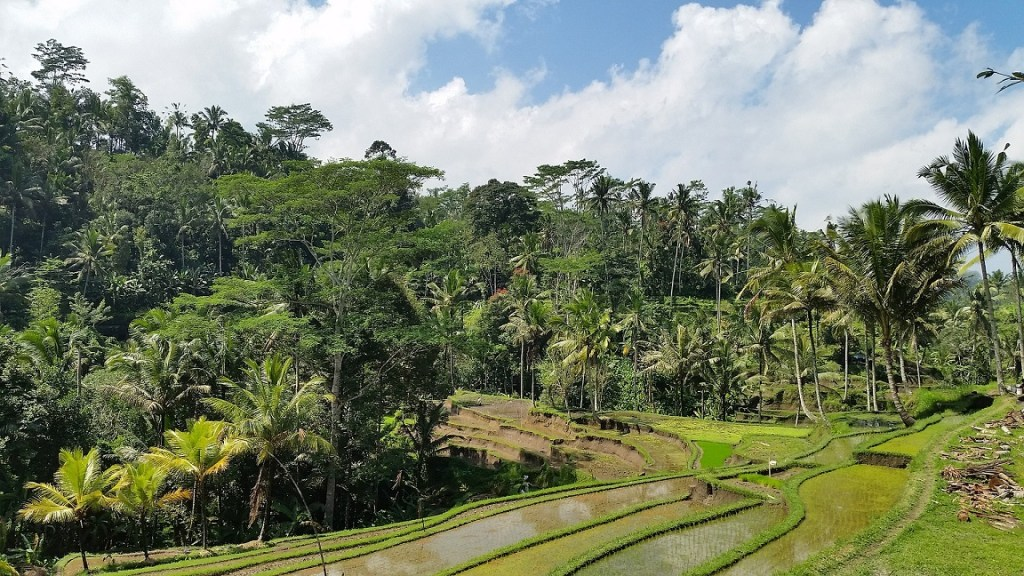 girlinchief-five-islands-you-have-to-add-to-your-bucket-list-bali