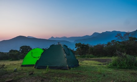 The Many Health Benefits Of Camping