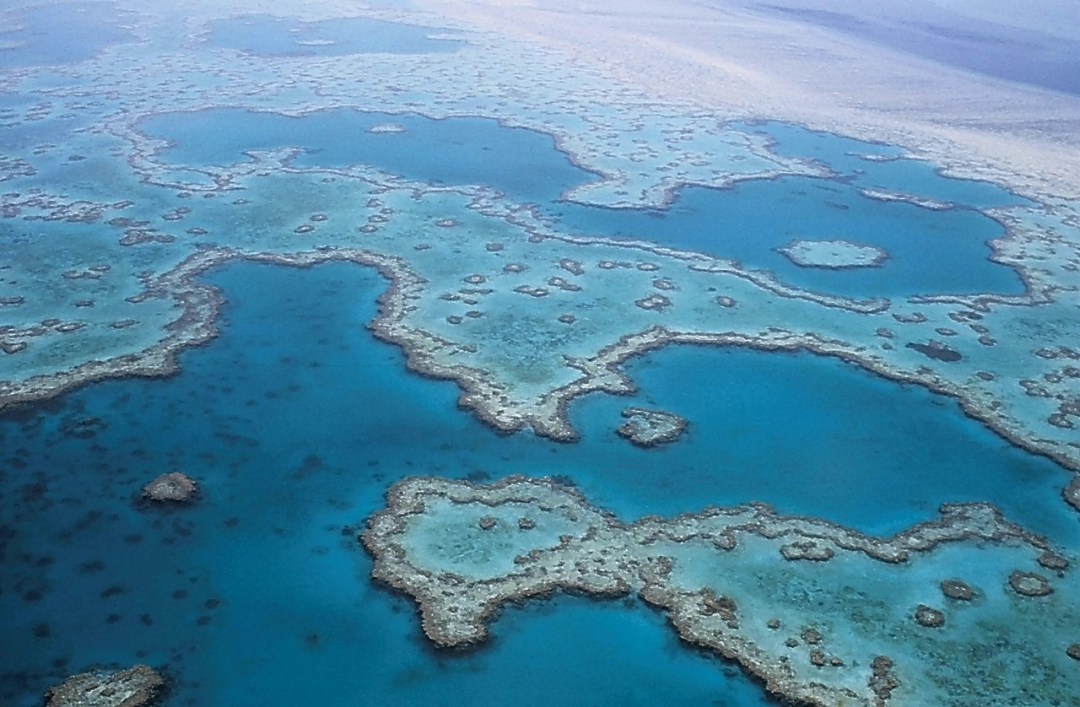 girlinchief-top-four-sightseeing-stunners-in-australia-great-barrier-reef