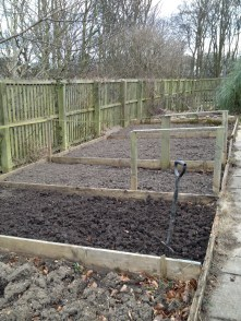 Weeded and ready for action