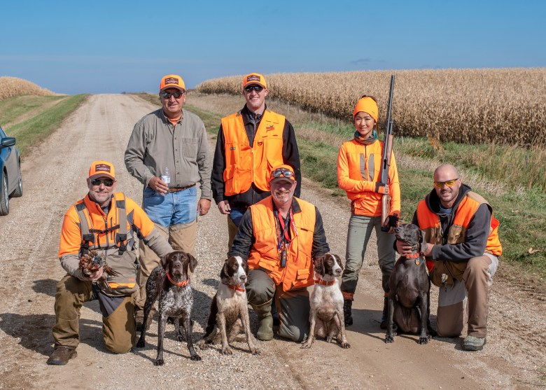 pheasant hunting group with dogs