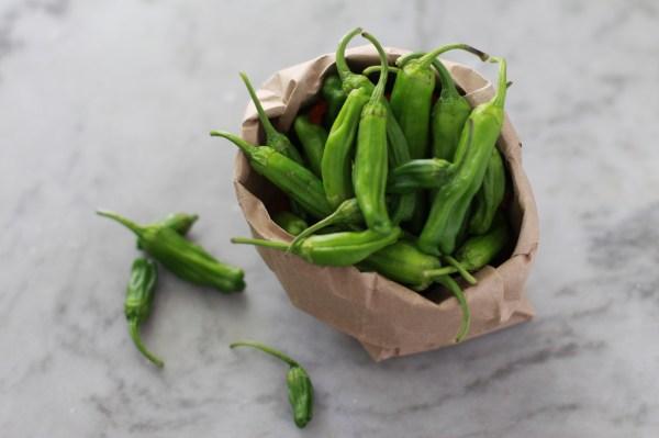 shishito peppers www.girlontherange.com