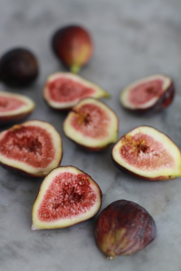 figs www.girlontherange.com