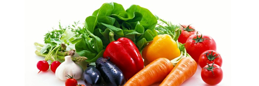 paleo diet for weight loss
