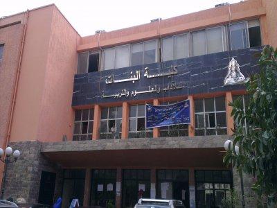 كلية البنات قرار المجلس الأعلى للجامعات الحكومية