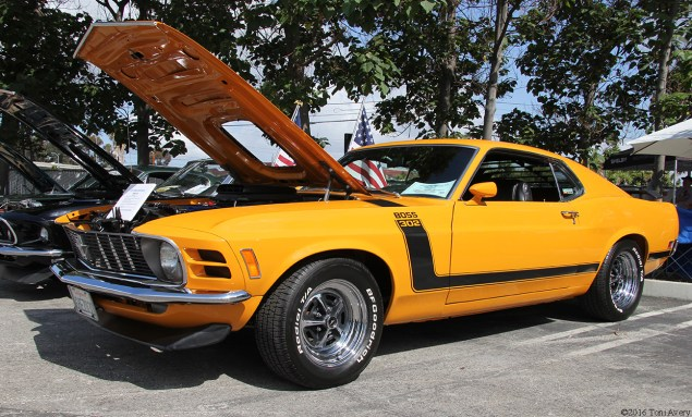 Shelby Car Show 1970 Boss 302 front