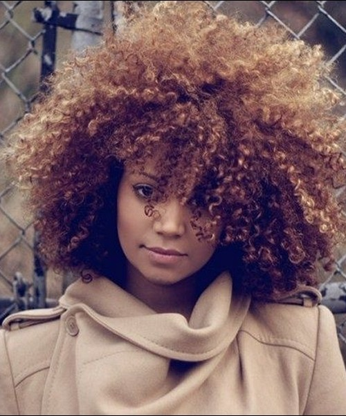 natural curly hair, african american woman, hair styles