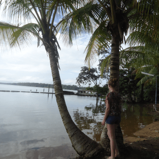 Overbridge - Suriname