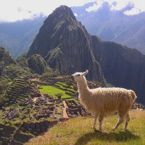 ZA 3 Machu Picchu flickr