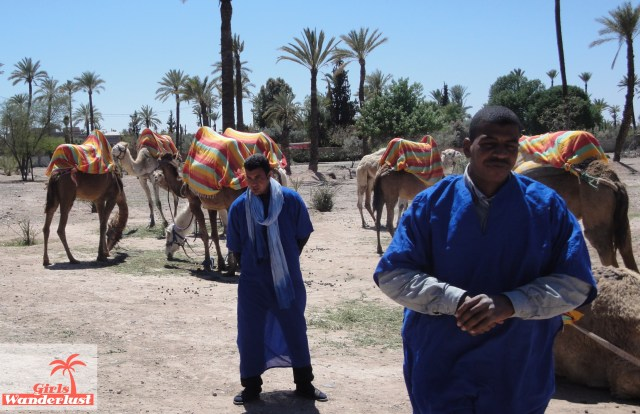15 Harmful animal tourist attractions to avoid by Girlswanderlust - Riding camels