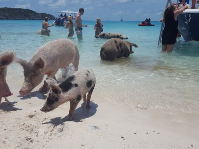 Guide to Visiting the Exumas – Bahamas | Girlswanderlust