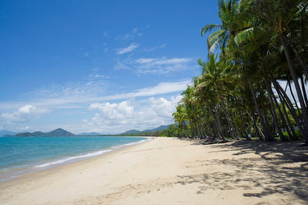 Palm Cove Beach.jpg