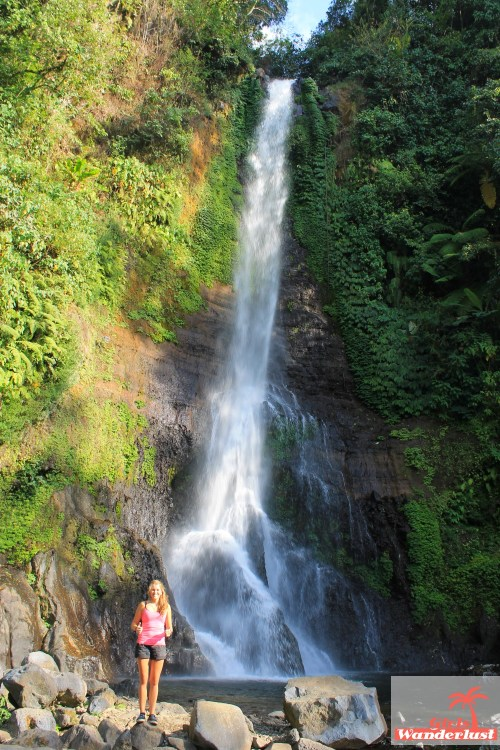 Discover the best waterfalls of Bali 15 magical waterfalls to add to your Bali bucket list by @girlswanderlus #Bali #indonesia #indonesie #waterfall #waterval #traveltip #wanderlust  #waterfalls#gitgit.jpg