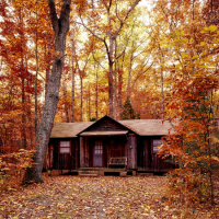 Autumn is coming! 10 Fun travel related things to do!