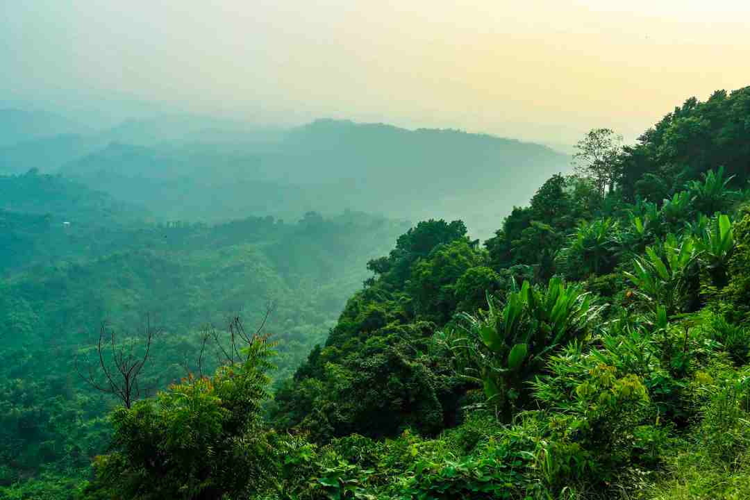 Girls Who Travel | A Lush, Green Forest | Chittagong Hill Tracts - A Bangladesh Must See