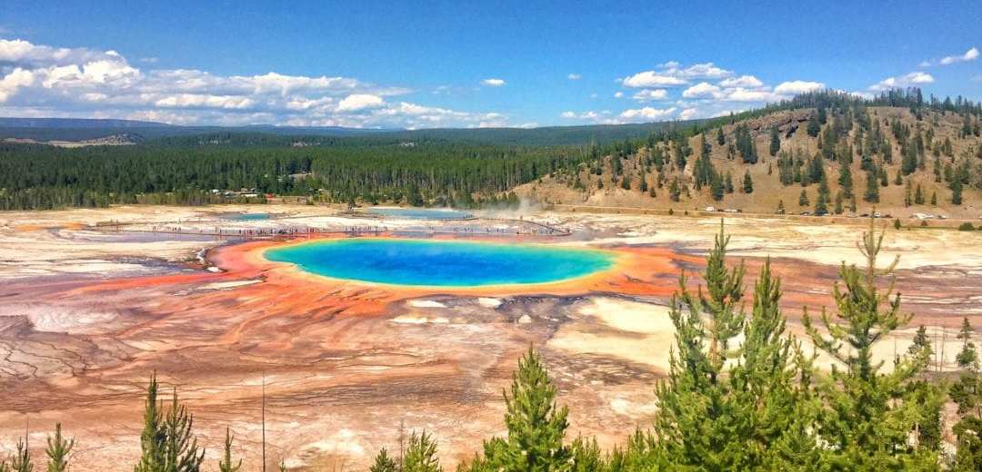 A very blue lake sits in a crater in Yellowstone. There are trees lining the exterior of the circle that holds the crater and lake. Its a gorgeous day with a few clouds scattered around the sky.