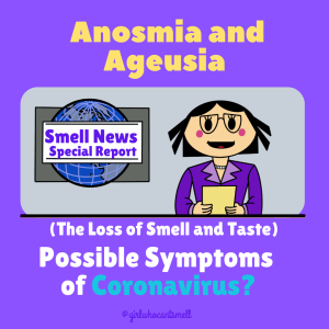 Coronavirus anosmia symptoms By The Girl Who Cant Smell