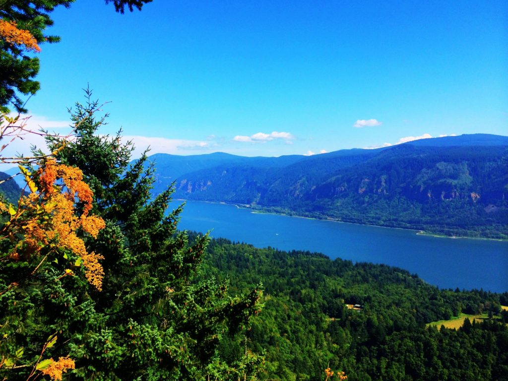 Great Oregon Hikes, Cape Horn