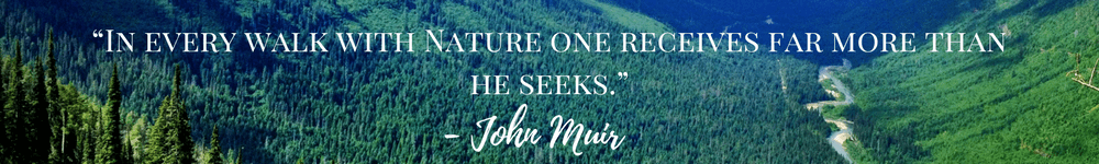 Great Hikes, John Muir Quote