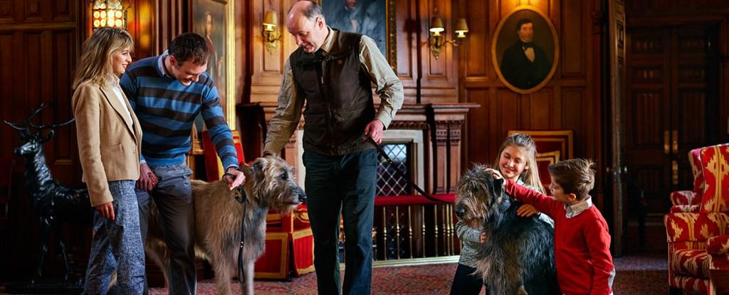 Ashford Castle, Pet Policy
