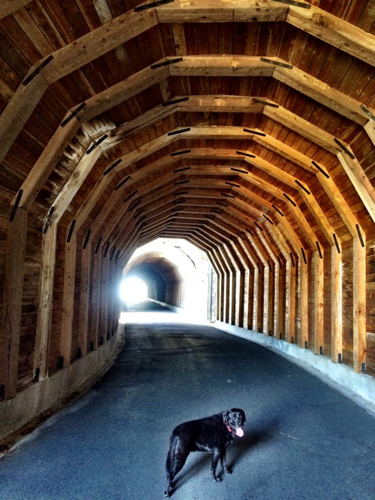 How to Get to Mosier Tunnels Trail, Great Hikes Oregon, Girl Who Travels the World
