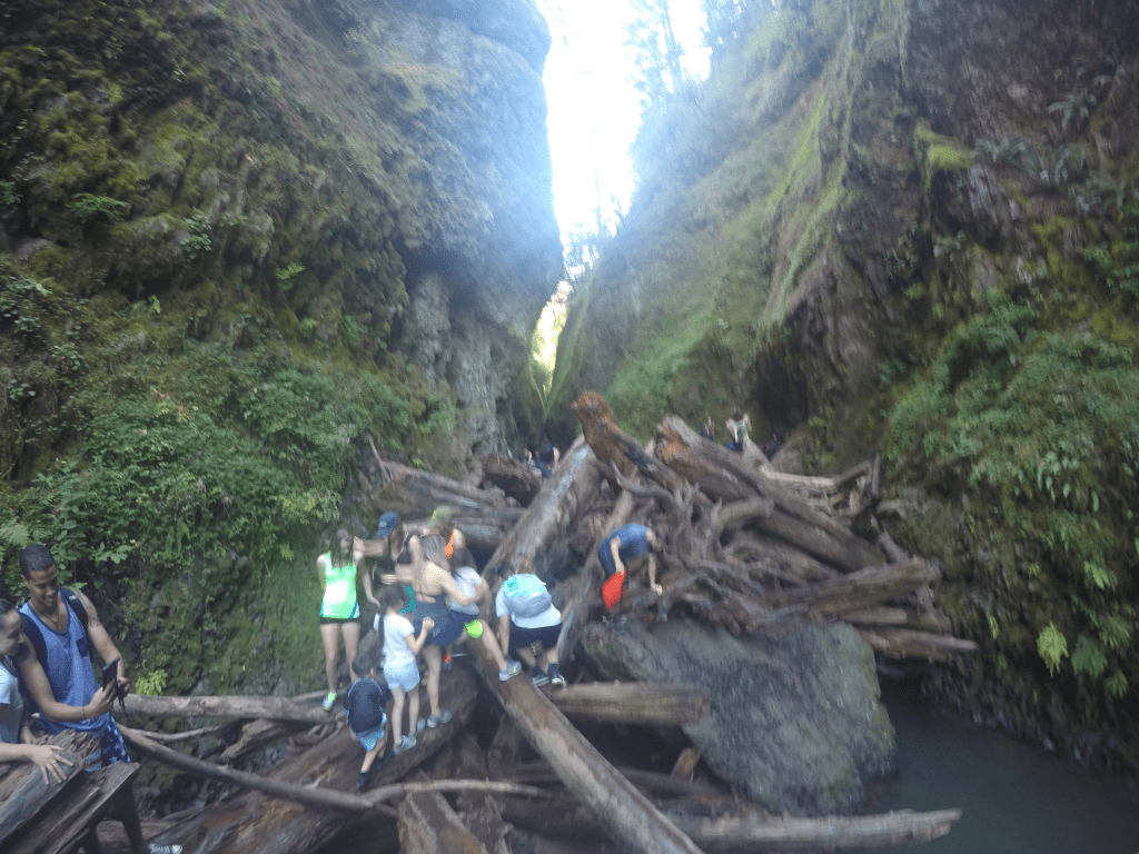 Oneonta Gorge Hikes, Great Oregon Hikes