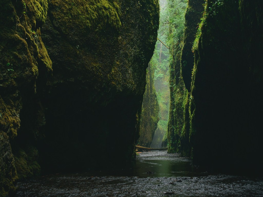 Oneonta Gorge Hike, Great Oregon Hikes
