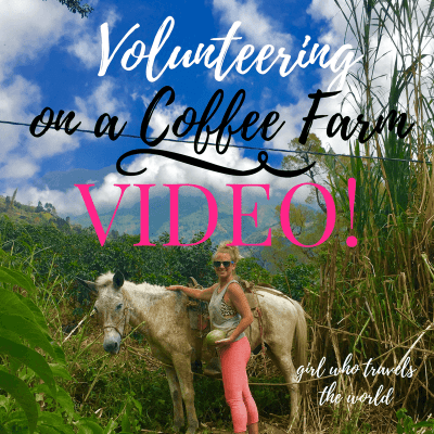 Volunteering on a Coffee Farm ~ Video!